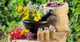 Naturheilmittel, Kräuter und Gräser